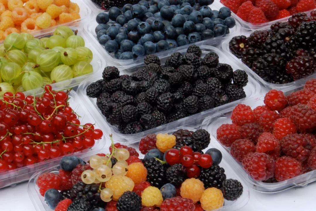 最强「夏日采摘攻略」,墨尔本周边4大新鲜果园!CBD1小时直达,N种水果现摘现吃!